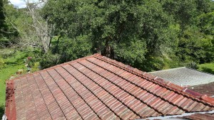 Roof report